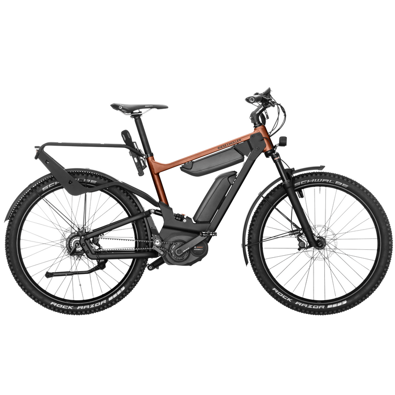 Riese & Muller Delite GX Rohloff (incl. 2 x 500Wh batteries)
