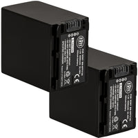 BM Premium 2 Pack of NP-FV100 Batteries for Sony Handycam Camcorders