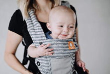 Load image into Gallery viewer, Baby Tula Coast Explore Mesh Baby Carrier, Adjustable Newborn to Toddler Carrier, Ergonomic and Multiple Positions for 7 – 45 pounds (Coast Graphite) - Nerds Guide to FI