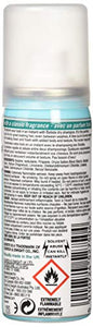 Batiste Dry Shampoo, 1.6 Fl Oz, Pack of 6 - Nerds Guide to FI