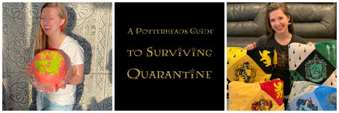 What to do in qaurantine as a potterhead, potter fan, why house pride is overrated, how to make your own harry potter birthday cake