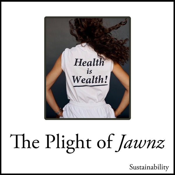 The Plight of Jawnz Sustainability