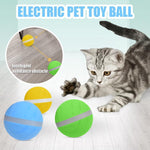 LED Pet Motion Ball - Broadwaytrending Shop