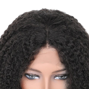 Kinky Curly Women Wig - Broadwaytrending Shop