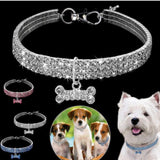 Crystal Pet Collar - Broadwaytrending Shop