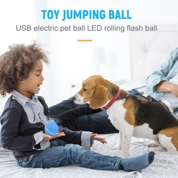 Smart Pet Ball - Broadwaytrending Shop