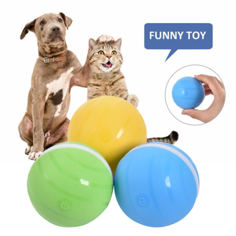 Go-Go Smart Ball - Broadwaytrends shop