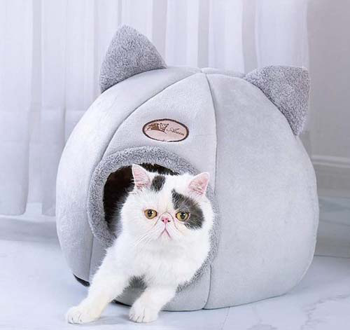 Soothing cat bed - Broadwaytrending Shop