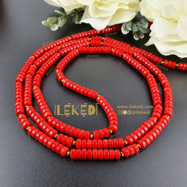 Isi Red Coral