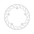 Brembo Serie Oro Fixed Brake Disc - Rear (68.B407.C8)