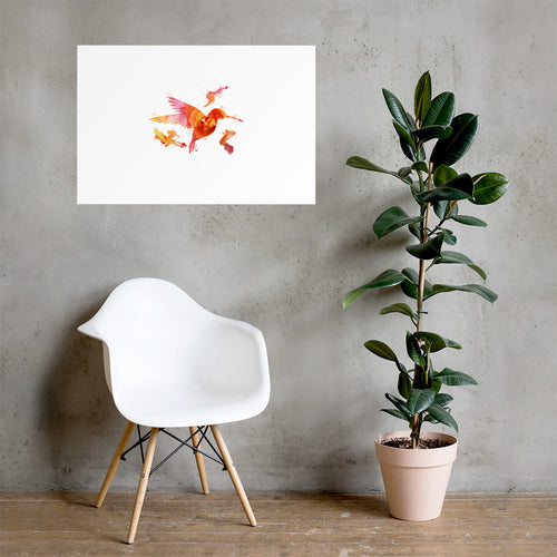 Poster Kolibri Rosa-Orange - Colorshape.eu