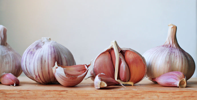 Garlic Varietals: How to Find, Prep and Create the Best Flavor with Every Clove