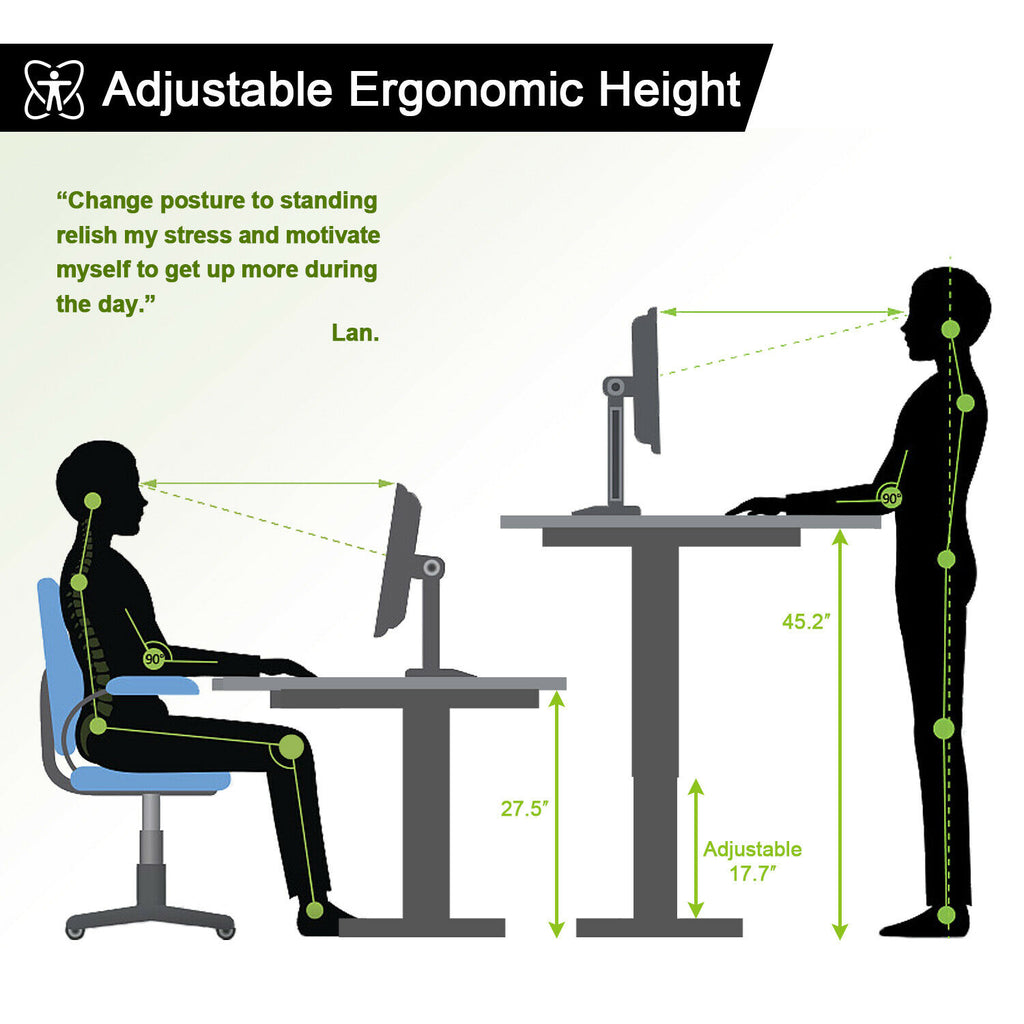 Walsport Standing Desk Dual Motor Electric Height Adjustable Frame w/ Tabletop