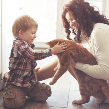 mother holding baby pet cat while toddler touches it