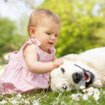 baby and dog playing in the grass