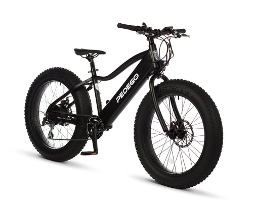 Trail Tracker Fat Bike 24