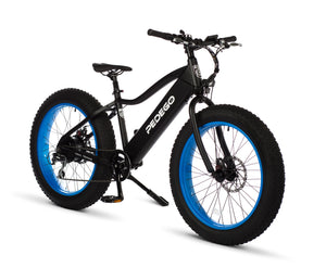 Trail Tracker Fat Bike 24""