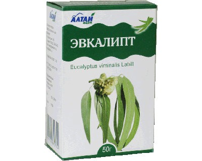 Eucalyptus Leaves, 1.76 oz / 50 g