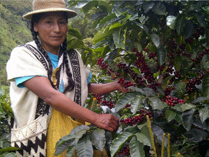 Colombia - Tolima Gaitania - Fair Trade - Organic