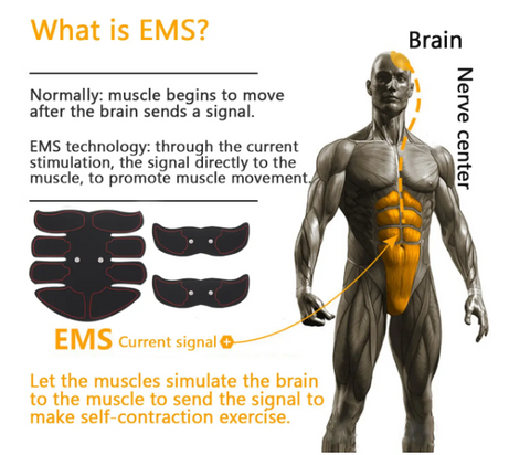 Muscle Stimulator uses EMS (electronic muscle stimulation) to force muscle contraction