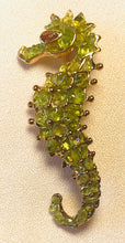 Load image into Gallery viewer, Peridot and Garnet Eye Brooch