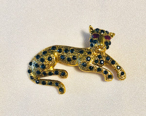 Genuine Sapphire and Ruby Eyes Brooch