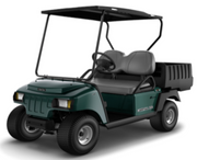 2019 CARRYALL 100 GAS GREEN CANOPY TOP DEMO