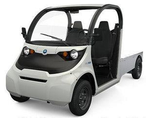 New 2021 Street Legal Electric GEM eLXD Base Model