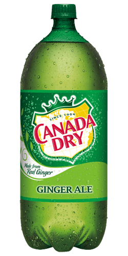 Canada Dry Ginger Ale 2 Liter - East Side Grocery
