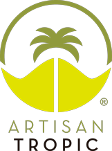 Artisan tropic Plantain Strips 4.5oz. - East Side Grocery