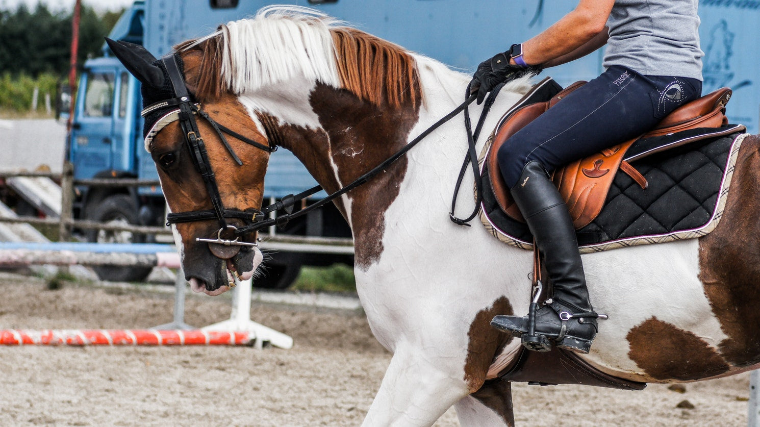 How to choose the right riding boots