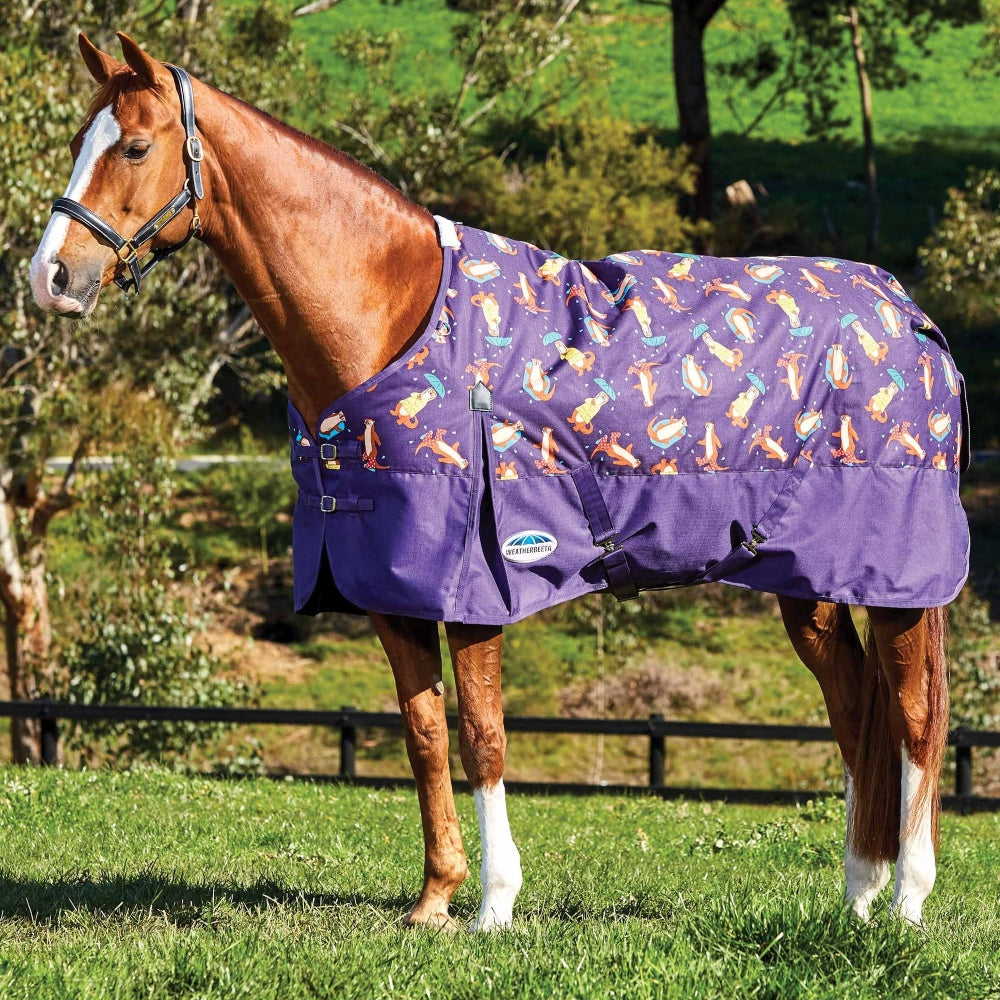 10004171 Weatherbeeta Comfitec Essential Standard Neck Medium Weight Blanket- Purple Otter Print