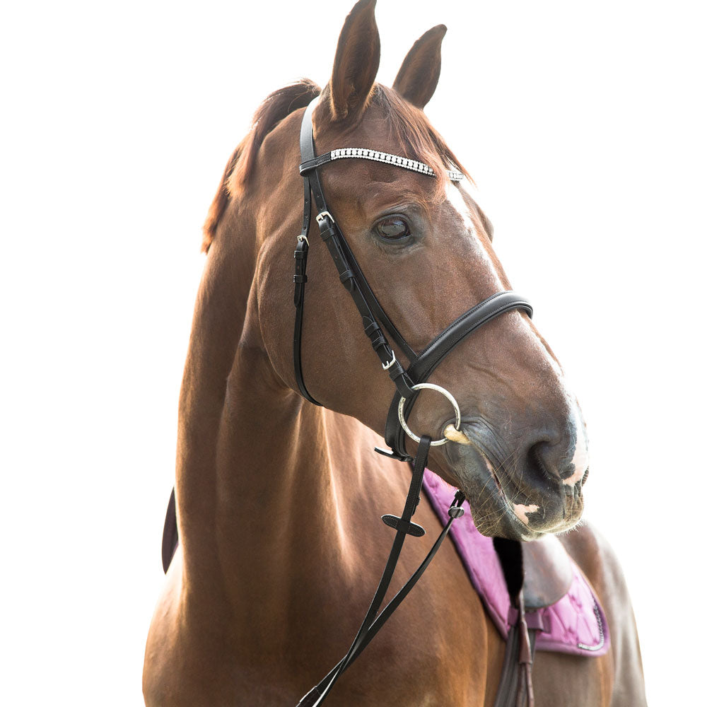 10107 Horze Belmont Bridle - Leather