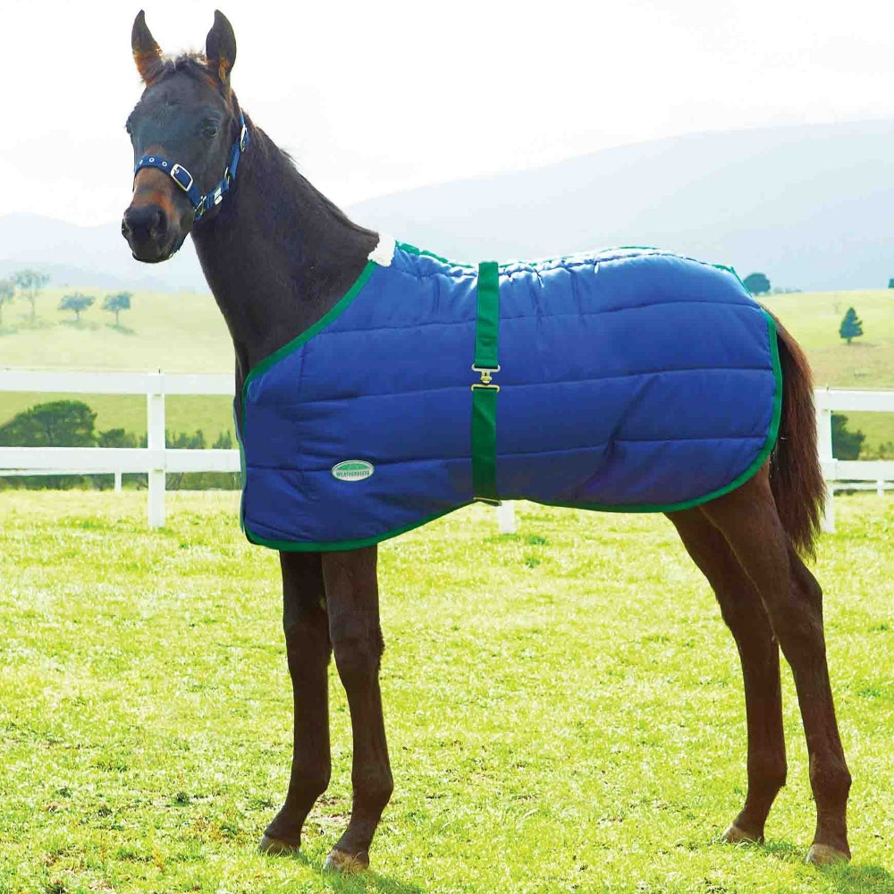 6191 Weatherbeeta 420 Denier Standard Neck Foal Blanket Medium Weight