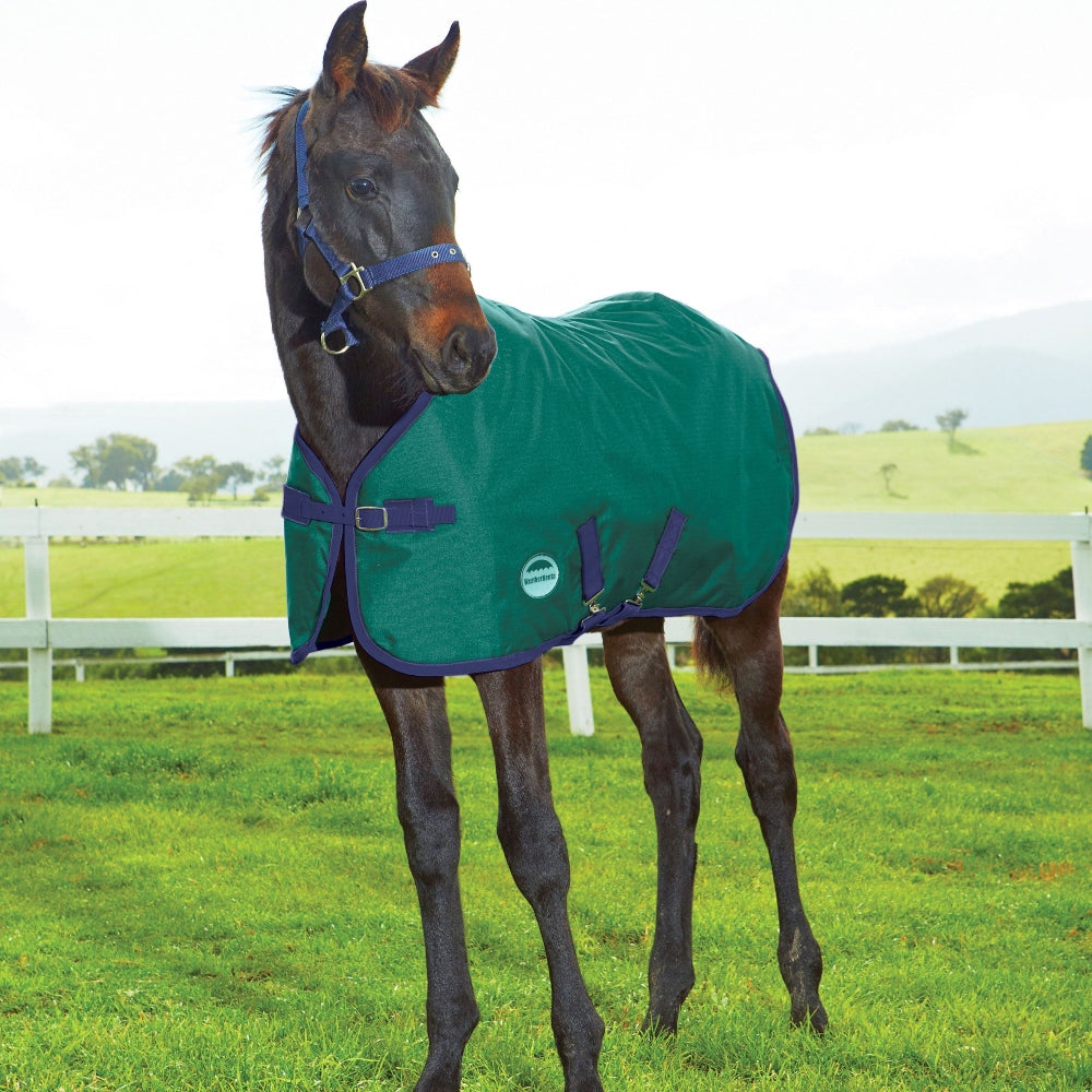 8022 Weatherbeeta 1200 Denier Standard Neck Foal Blanket Medium Weight II