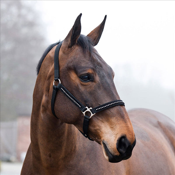 22175 Horze Diamond Halter