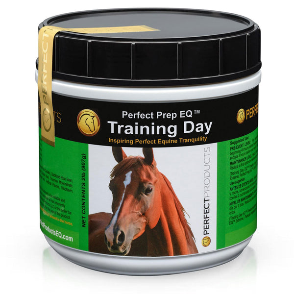 Perfect Prep EQ Training Day