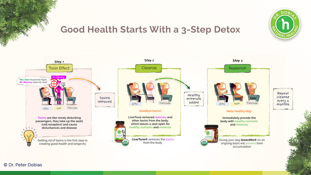 LiverTune - why detoxing is important for your dog's health