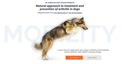 Free course on arthritis and mobility for dogs