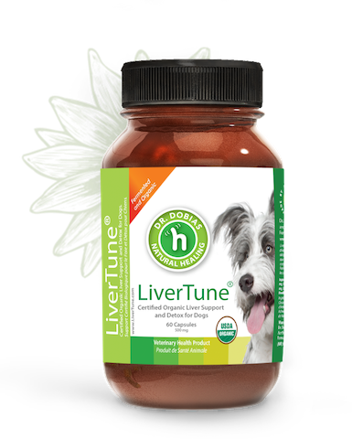 LiverTune - Liver Support for Dogs