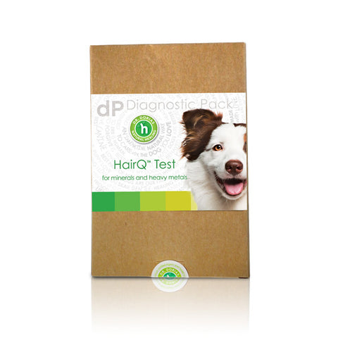 Best Dog Food For Epileptic Dogs