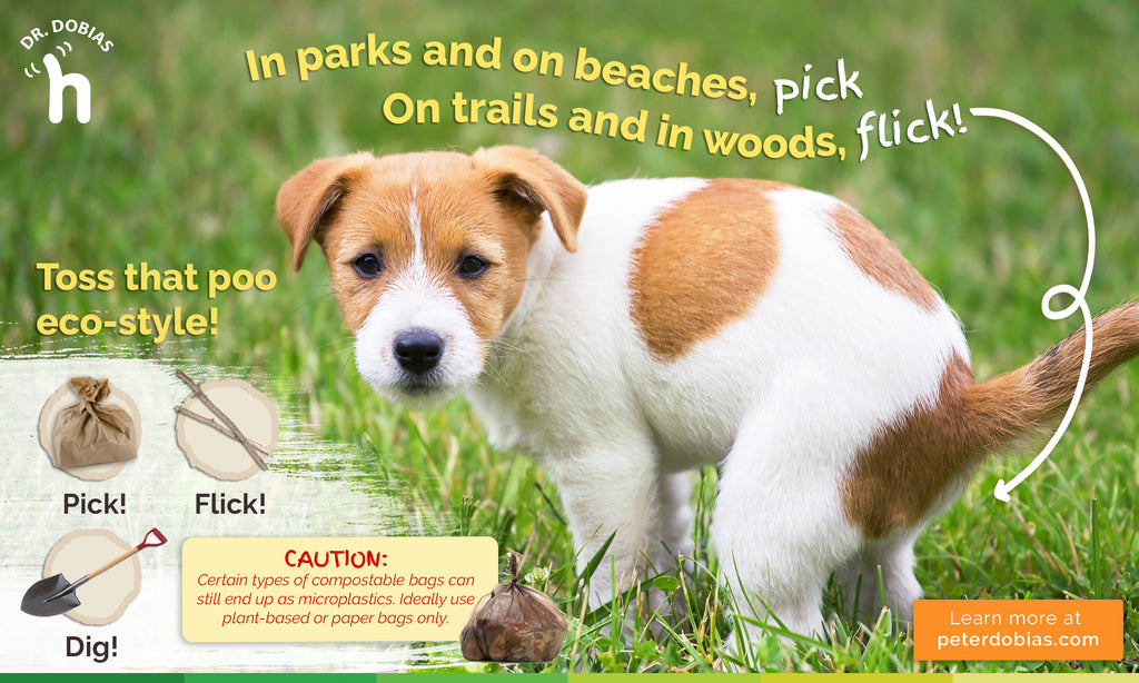 Dog poop bags - when to pick it up or flick it
