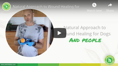 Natural Approach to Wound Healing