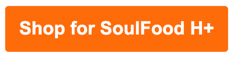 SoulFood H+ natural fermented multivitamin