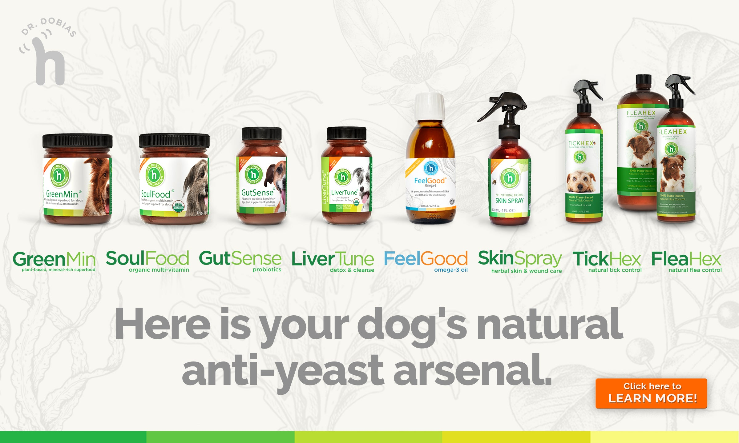 Anti-yeast arsenal collection page