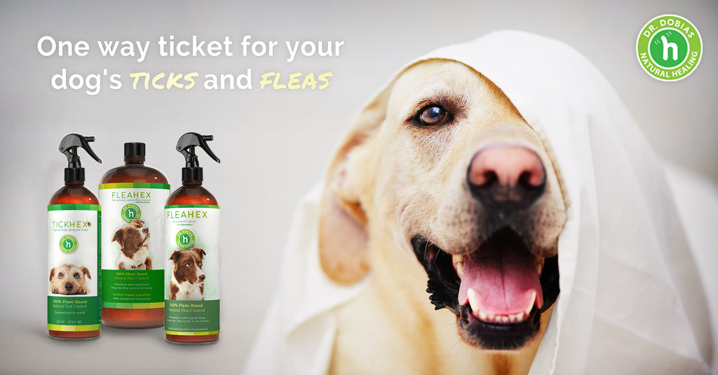FleaHex and TickHex - natural flea and tick control products for dogs - Dr. Dobias Healing Solutions