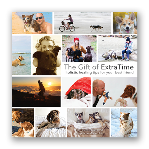 The Gift of Extra Time E-book