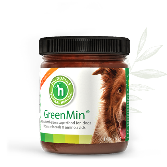 Natural Liver Cleanse For Dogs