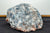 COLLECTORS RAW BLUE CALCITE XXL - OA LIVING