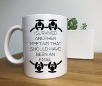 I Survived Another Meeting That Should Have Been An Email,  Co Worker Gift, Gift for Friend,  Funny Gift
